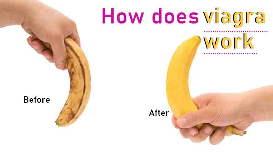 How does Viagra work